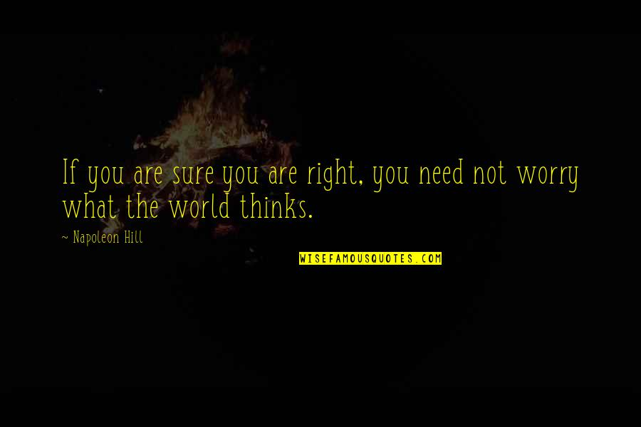 Need Not Worry Quotes By Napoleon Hill: If you are sure you are right, you