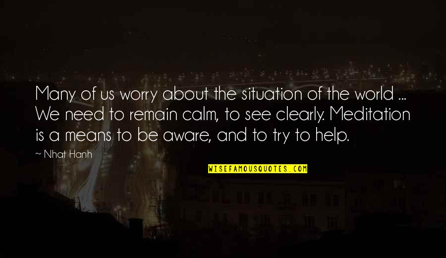 Need Not Worry Quotes By Nhat Hanh: Many of us worry about the situation of