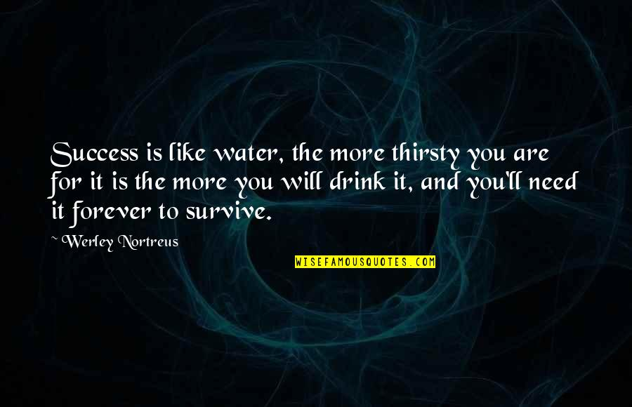 Need You More Quotes By Werley Nortreus: Success is like water, the more thirsty you