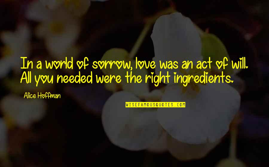 Needed Love Quotes By Alice Hoffman: In a world of sorrow, love was an