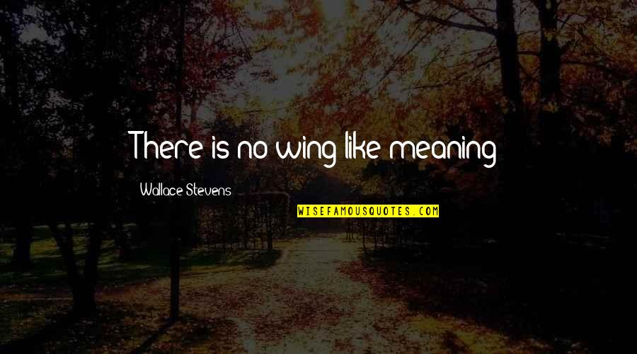 Needing A Change Quotes By Wallace Stevens: There is no wing like meaning