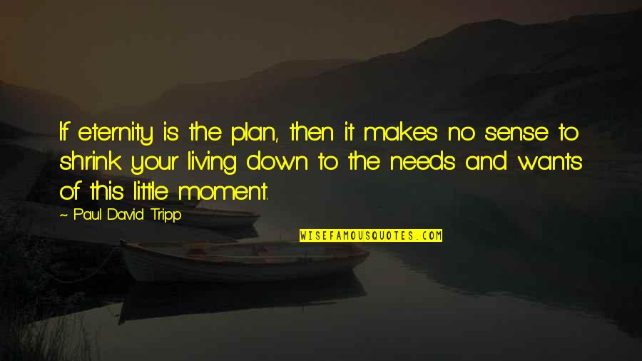 Needs Vs Wants Quotes By Paul David Tripp: If eternity is the plan, then it makes