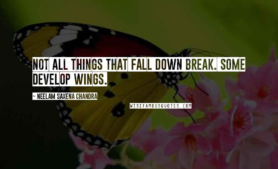 Neelam Saxena Chandra quotes: Not all things that fall down break. Some develop wings.