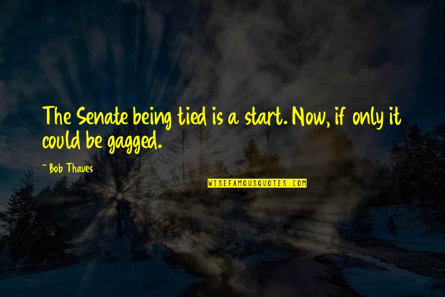 Negative Effects Pride Quotes By Bob Thaves: The Senate being tied is a start. Now,