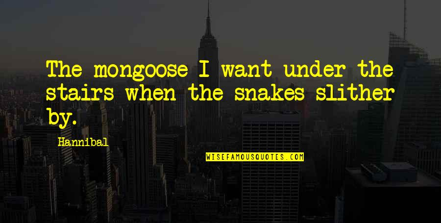 Negative Utilitarianism Quotes By Hannibal: The mongoose I want under the stairs when