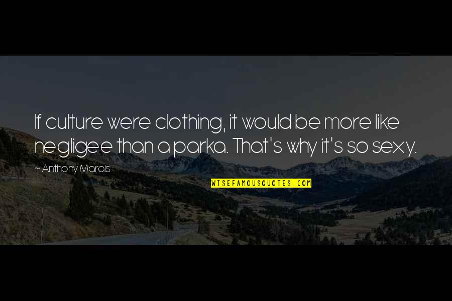 Negligee Quotes By Anthony Marais: If culture were clothing, it would be more