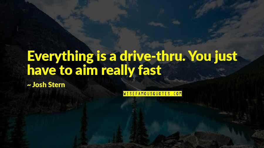 Never Ask God Why Me Quotes By Josh Stern: Everything is a drive-thru. You just have to