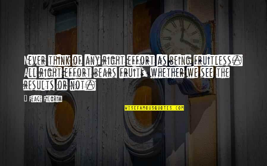 Never Being Right Quotes By Peace Pilgrim: Never think of any right effort as being