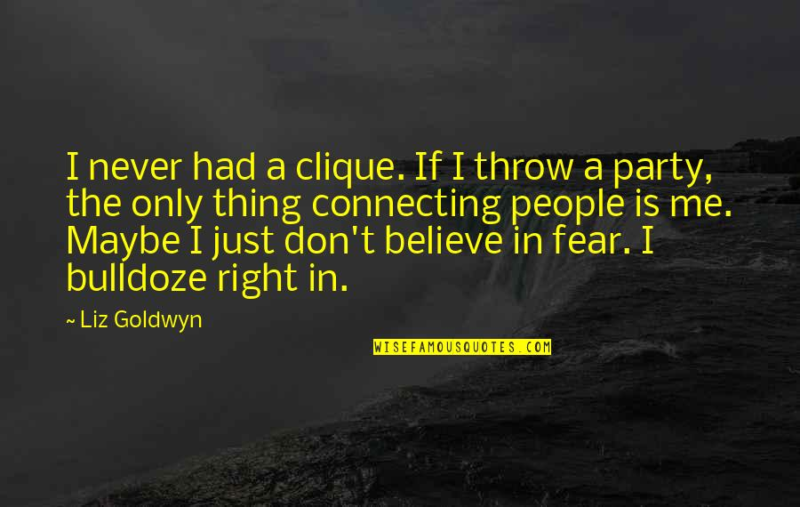 Never Believe Me Quotes By Liz Goldwyn: I never had a clique. If I throw