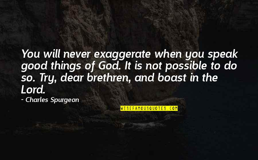 Never Do Good Quotes By Charles Spurgeon: You will never exaggerate when you speak good