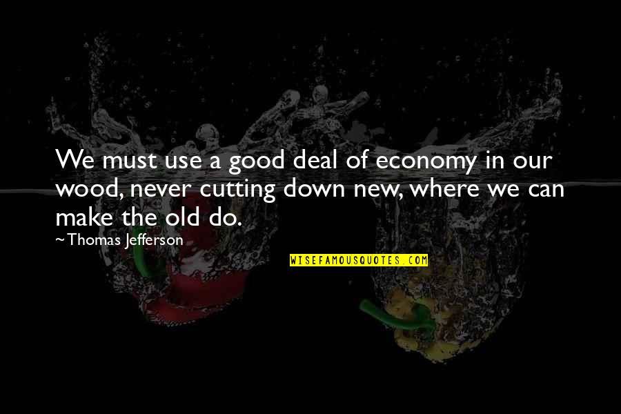 Never Do Good Quotes By Thomas Jefferson: We must use a good deal of economy
