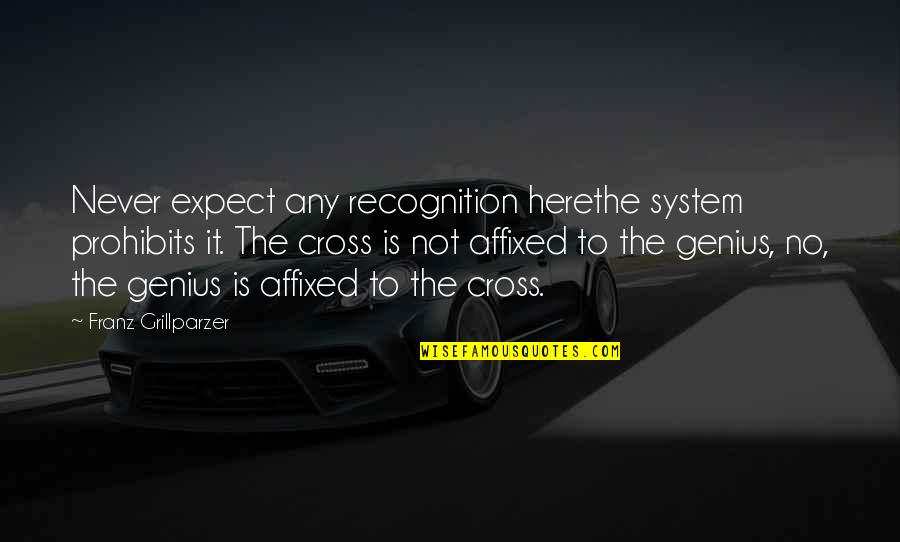Never Expect Quotes By Franz Grillparzer: Never expect any recognition herethe system prohibits it.