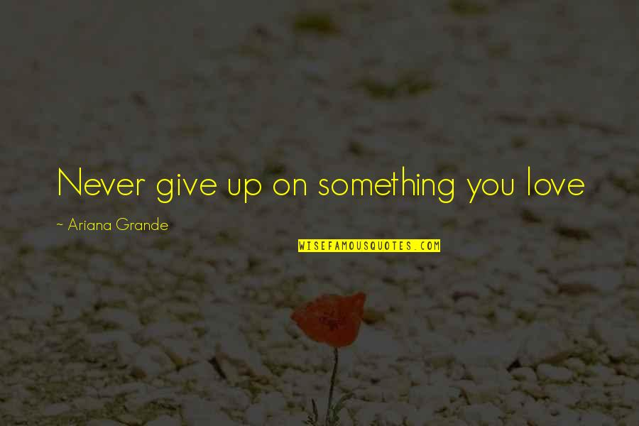 Never Giving Up You Quotes By Ariana Grande: Never give up on something you love
