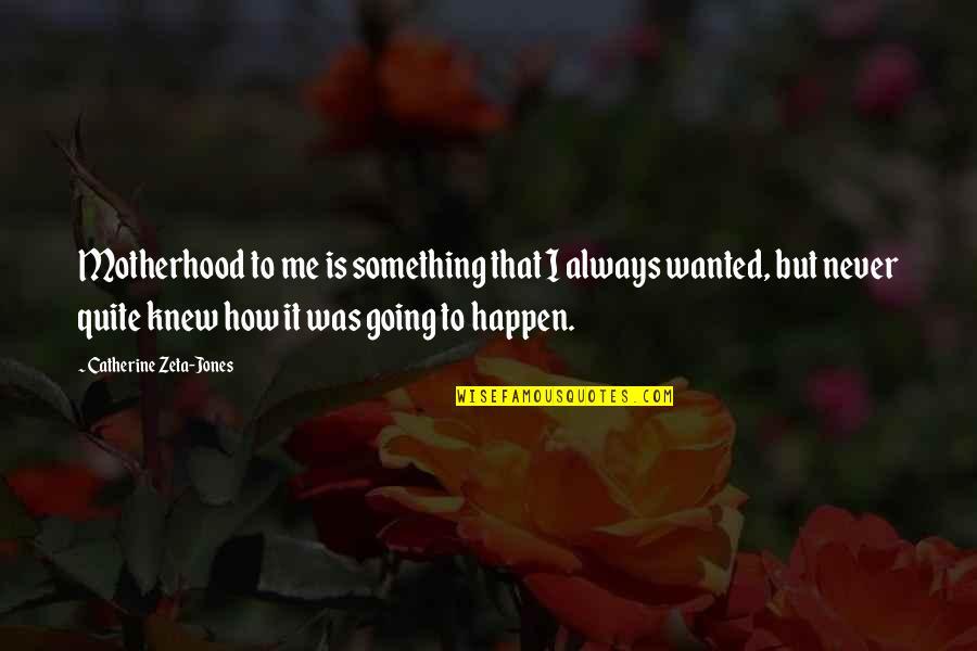 Never Knew Me Quotes By Catherine Zeta-Jones: Motherhood to me is something that I always