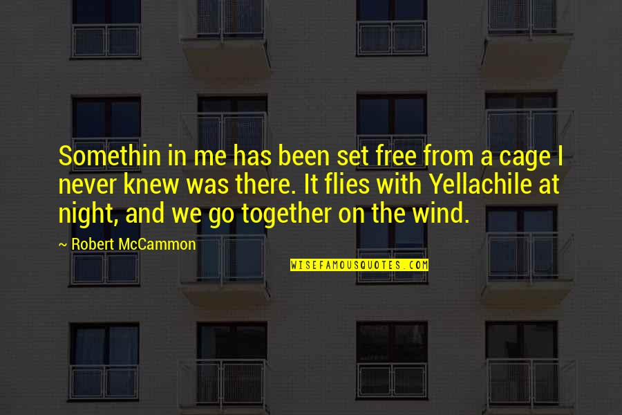 Never Knew Me Quotes By Robert McCammon: Somethin in me has been set free from