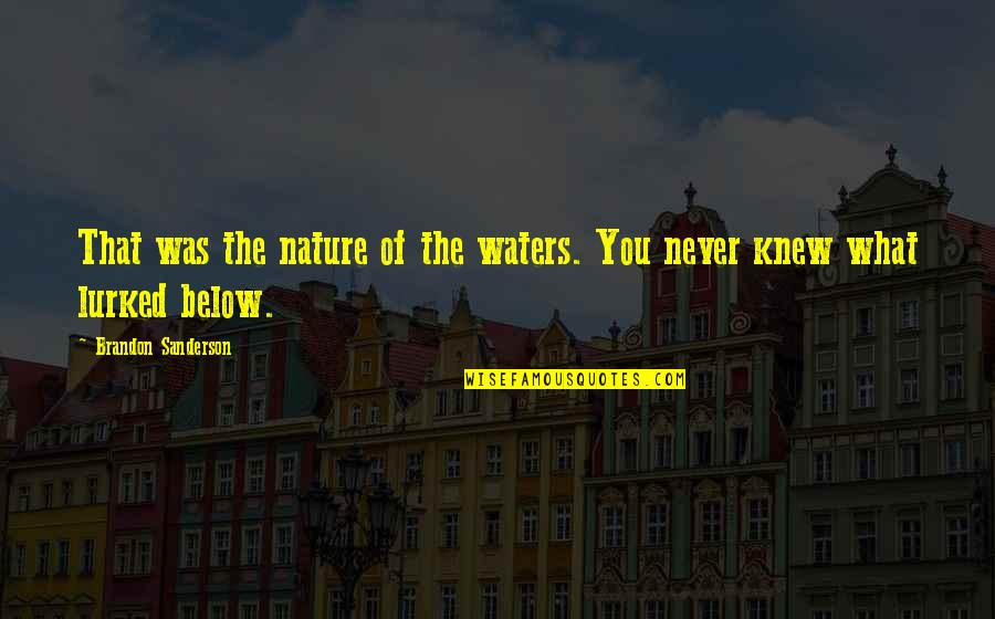 Never Knew You Quotes By Brandon Sanderson: That was the nature of the waters. You