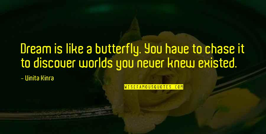Never Knew You Quotes By Vinita Kinra: Dream is like a butterfly. You have to