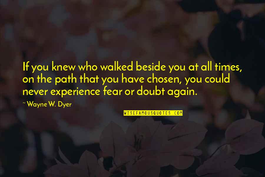 Never Knew You Quotes By Wayne W. Dyer: If you knew who walked beside you at