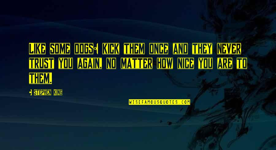 Never Trust Again Quotes By Stephen King: Like some dogs: kick them once and they