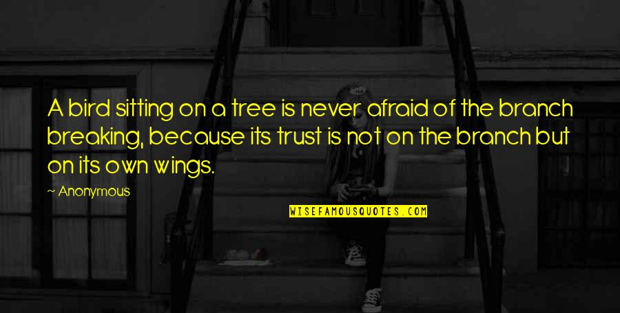 Never Trust Quotes By Anonymous: A bird sitting on a tree is never