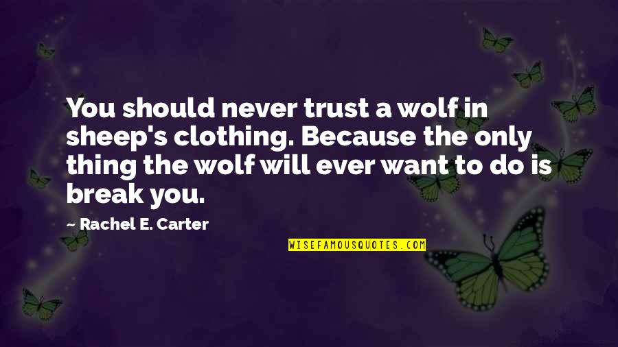Never Trust Quotes By Rachel E. Carter: You should never trust a wolf in sheep's