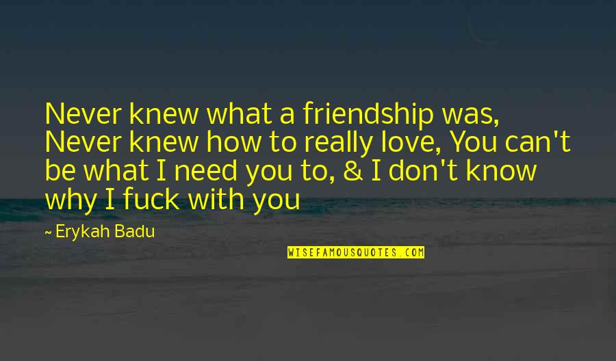 Never Was Love Quotes By Erykah Badu: Never knew what a friendship was, Never knew