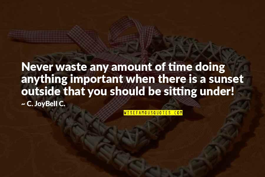 Never Waste My Time Quotes By C. JoyBell C.: Never waste any amount of time doing anything