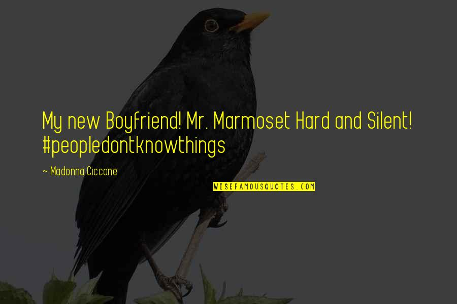 New Boyfriend Quotes By Madonna Ciccone: My new Boyfriend! Mr. Marmoset Hard and Silent!