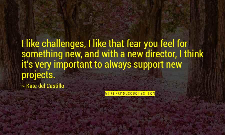 New Challenges Quotes By Kate Del Castillo: I like challenges, I like that fear you
