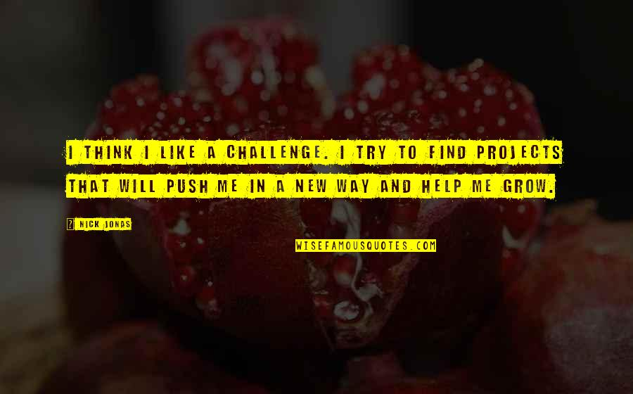 New Challenges Quotes By Nick Jonas: I think I like a challenge. I try