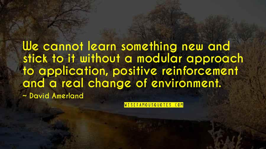 New Environment Quotes By David Amerland: We cannot learn something new and stick to