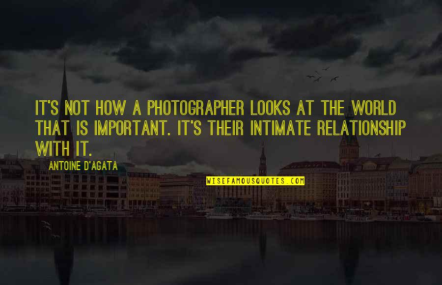 New Leaf Quotes By Antoine D'Agata: It's not how a photographer looks at the