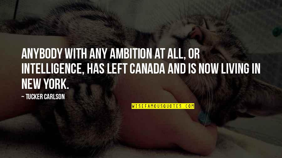 New Leaf Quotes By Tucker Carlson: Anybody with any ambition at all, or intelligence,