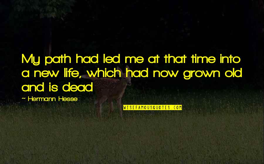 New Life New Me Quotes By Hermann Hesse: My path had led me at that time