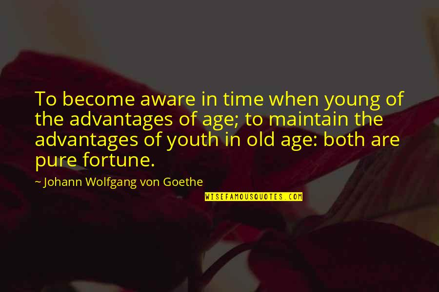 New Year Love Quotes By Johann Wolfgang Von Goethe: To become aware in time when young of