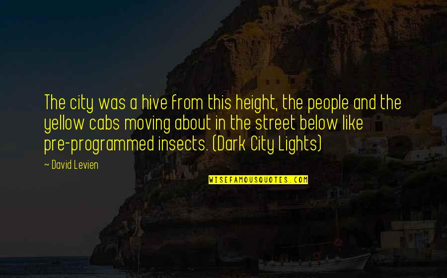 New York Cabs Quotes By David Levien: The city was a hive from this height,