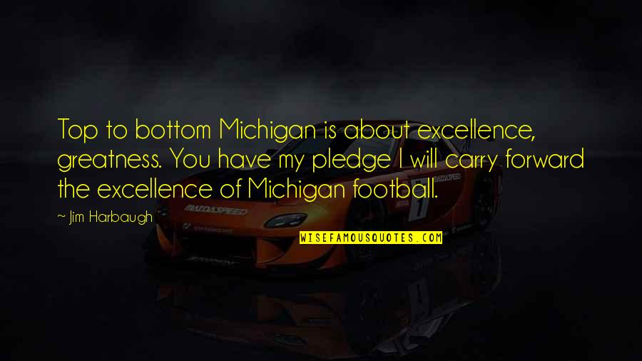 New York Carrie Bradshaw Quotes By Jim Harbaugh: Top to bottom Michigan is about excellence, greatness.