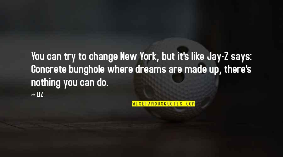 New York Dreams Quotes By LIZ: You can try to change New York, but