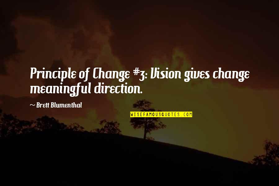 New You Quotes By Brett Blumenthal: Principle of Change #3: Vision gives change meaningful