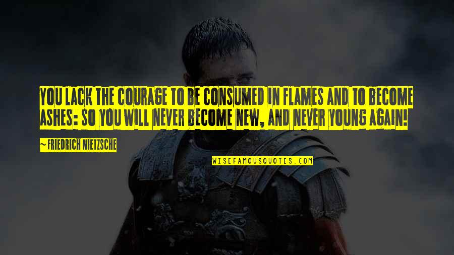 New You Quotes By Friedrich Nietzsche: You lack the courage to be consumed in
