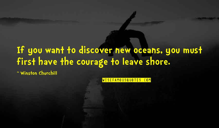 New You Quotes By Winston Churchill: If you want to discover new oceans, you