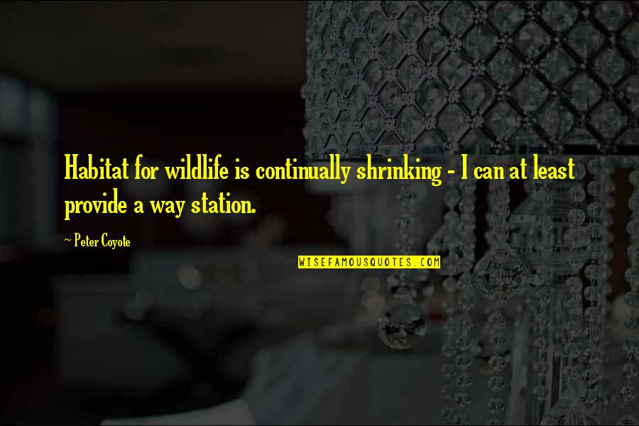 Nice Housewarming Quotes By Peter Coyote: Habitat for wildlife is continually shrinking - I
