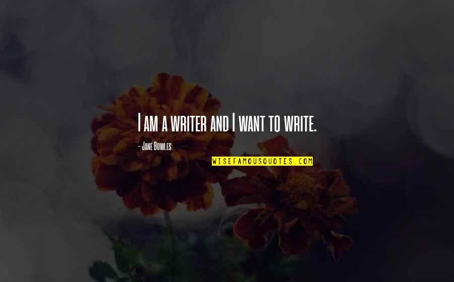Nick Dunne Quotes By Jane Bowles: I am a writer and I want to