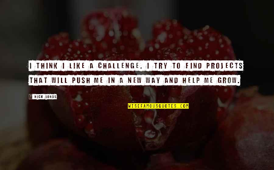 Nick Quotes By Nick Jonas: I think I like a challenge. I try