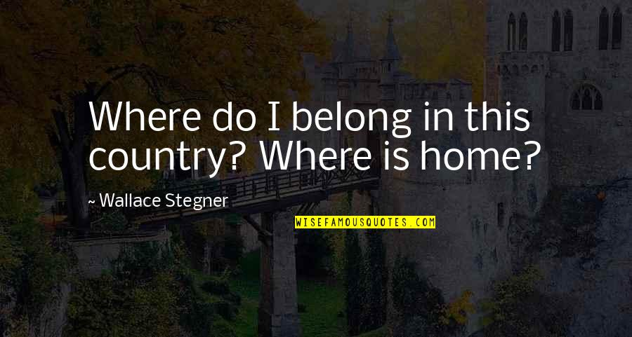 Nicola Abbagnano Quotes By Wallace Stegner: Where do I belong in this country? Where
