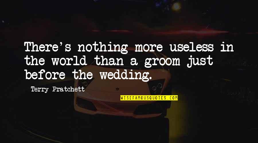 Nicola Roberts Quotes By Terry Pratchett: There's nothing more useless in the world than