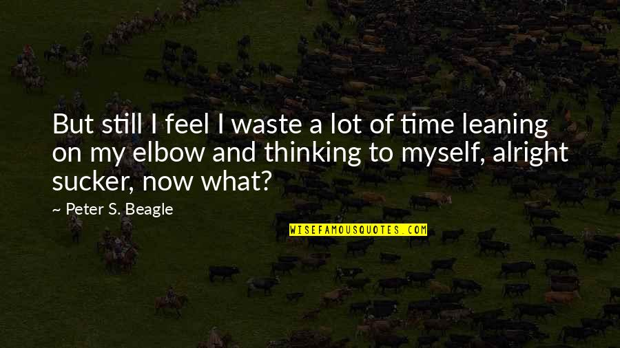 Niffelheim Quotes By Peter S. Beagle: But still I feel I waste a lot