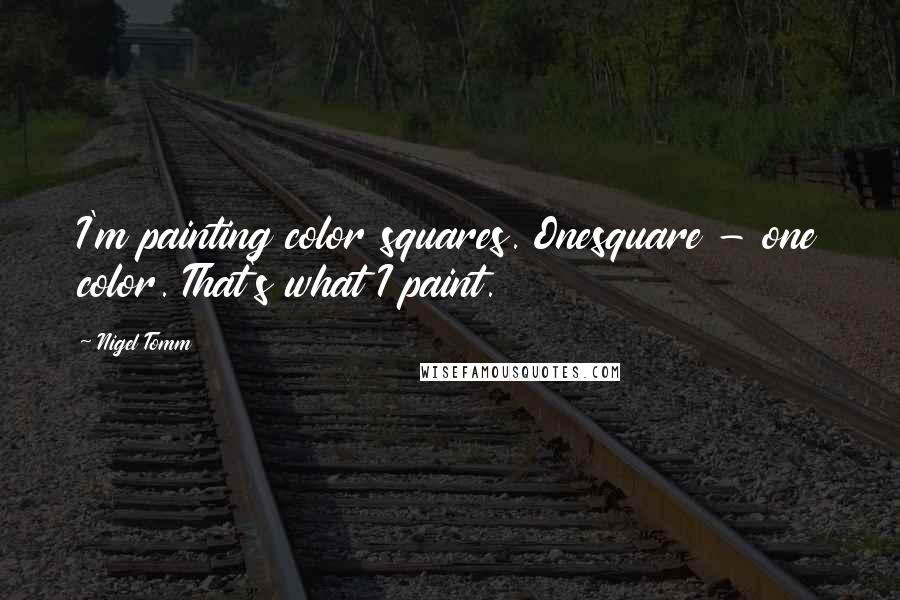 Nigel Tomm quotes: I'm painting color squares. Onesquare - one color. That's what I paint.