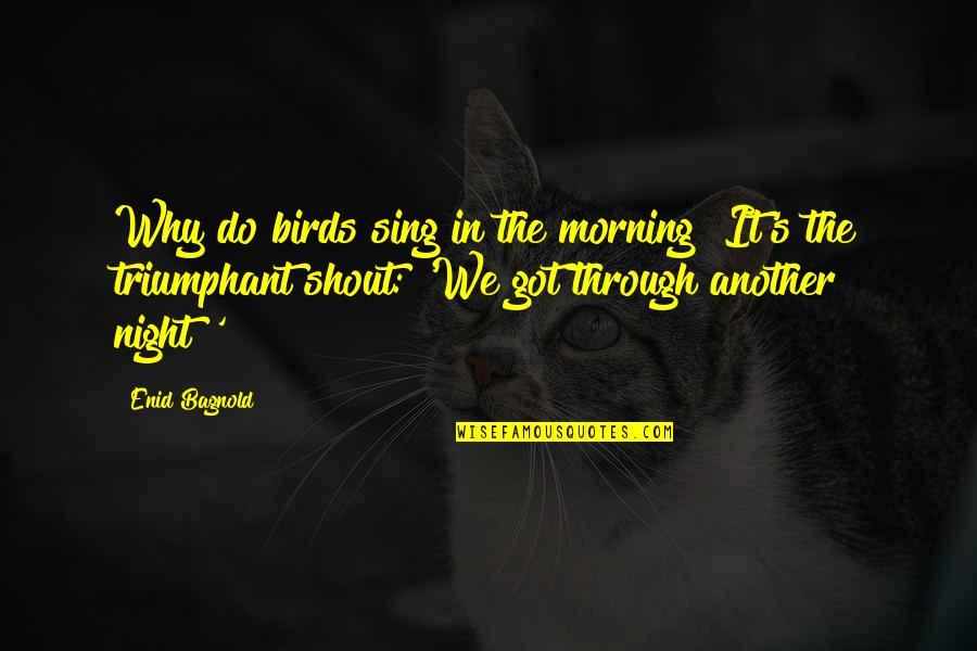Night Birds Quotes By Enid Bagnold: Why do birds sing in the morning? It's