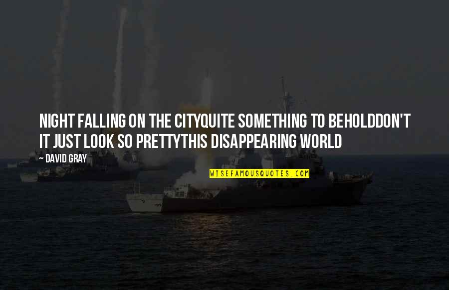 Night City Quotes By David Gray: Night falling on the cityQuite something to beholdDon't